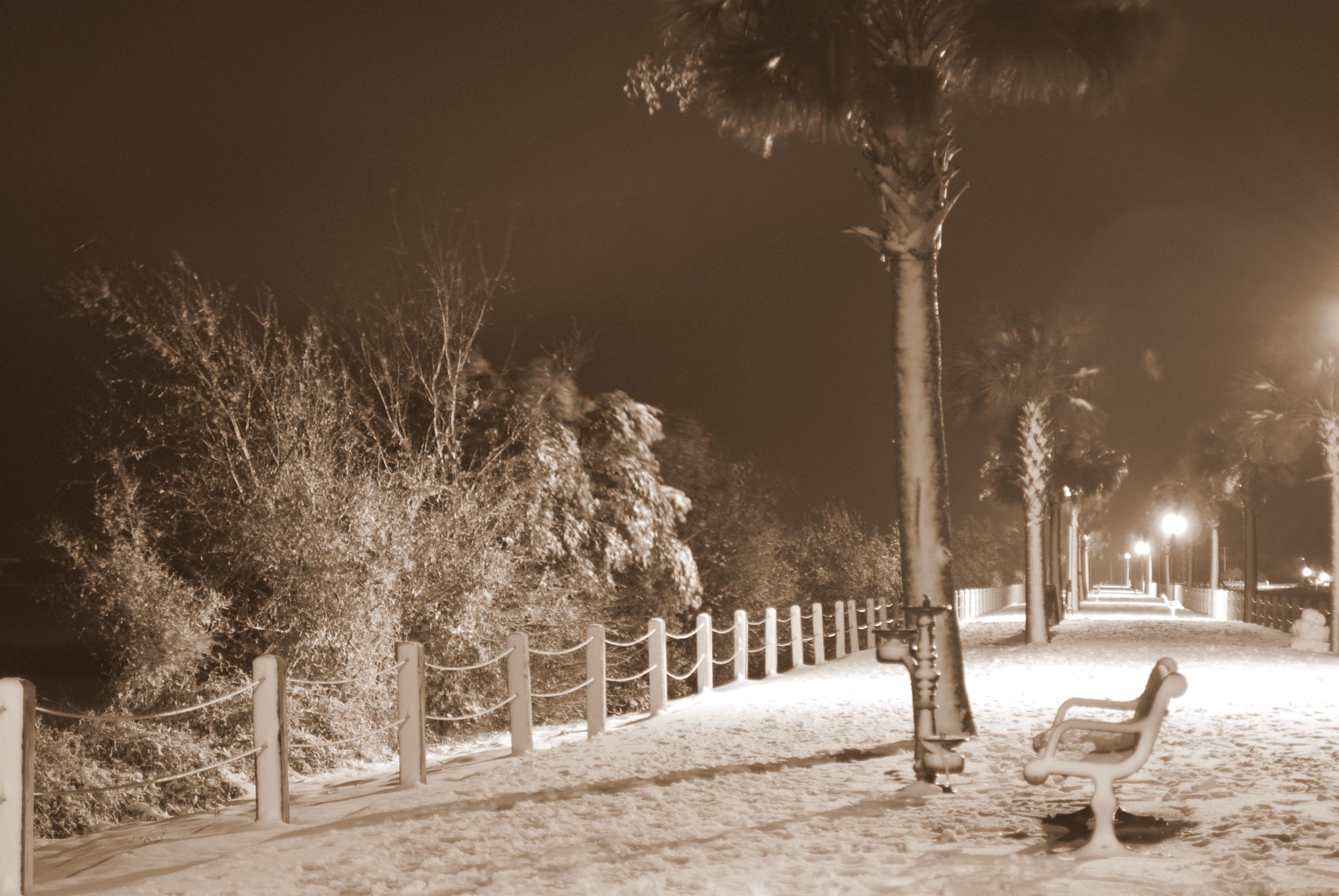 Sepia Scenes of Snow in South Carolina!